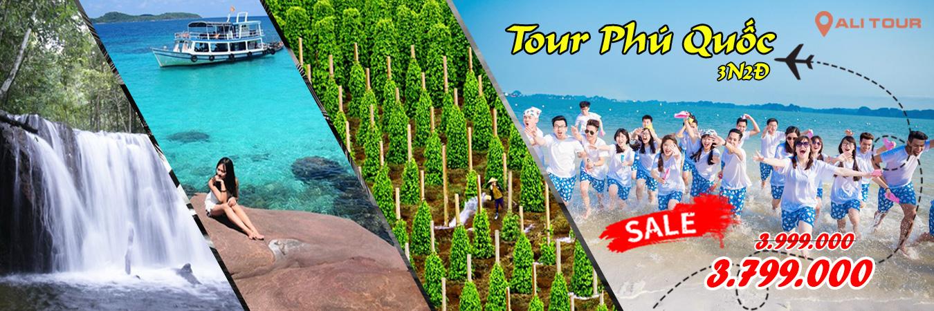 banner tour phú quốc