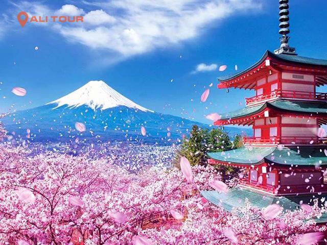 Khung cảnh núi Phú Sĩ vào mùa xuân