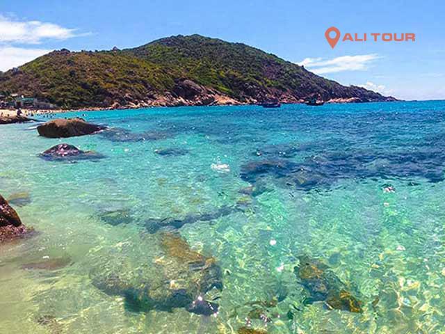 Ngắm san hô và tắm biển tại bãi Nồm